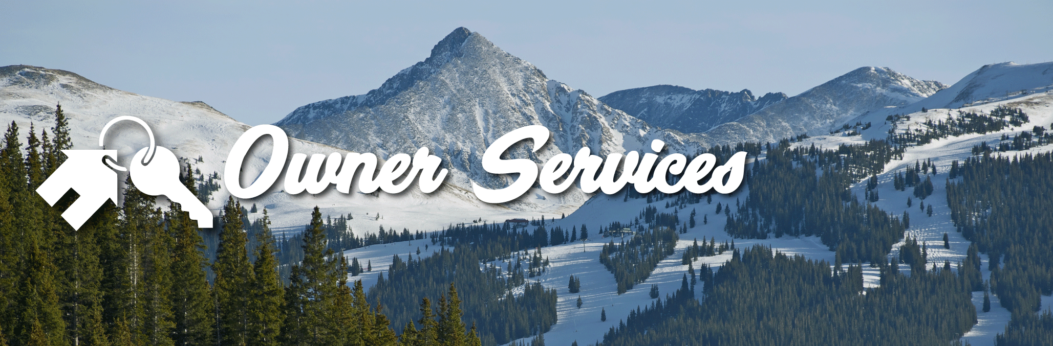 owner services slider